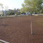 Ανάπλαση πλατείας στη Ν. Αρτάκη