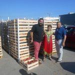 Νέα διανομή φρούτων από τον Δήμο Χαλκιδέων