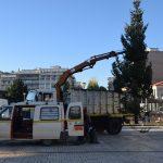 Ριζική ανακατασκευή παρτεριών στην Πλατεία Αγορά Χαλκίδας