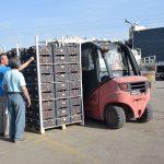 Είκοσι τόνοι ροδάκινα μοιράσθηκαν σε ευπαθείς  ομάδες του Δήμου Χαλκιδέων