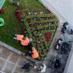 Φύτευση καλλωπιστικών φυτών και λουλουδιών στο Δήμο Χαλκιδέων