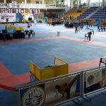 Ανοιχτό Διασυλλογικό Πρωτάθλημα Έγχρωμων και Μαύρων Ζωνών