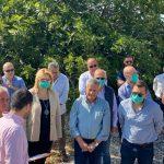 Έτοιμη η μελέτη για τη διευθέτηση και διάνοιξη των αμπολών σε μήκος 15 χλμ σε όλη τη Δημοτική Ενότητα Ληλαντίων