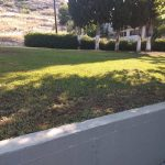 Διαμόρφωση και συντήρηση χώρων πρασίνου από τη Γεωτεχνική Υπηρεσία