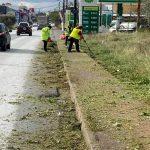 Κοπή χόρτων, αποψιλώσεις και καθαρισμοί στη Λεωφόρο Γ. Παπανδρέου