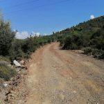 Διάνοιξη αγροτικών και δασικών οδών στα Φύλλα