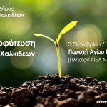 Εθελοντική δράση δενδροφύτευσης από τον Δήμο Χαλκιδέων