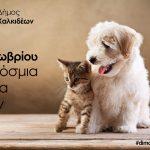 Ο Δήμος Χαλκιδέων για την Παγκόσμια Ημέρα Ζώων